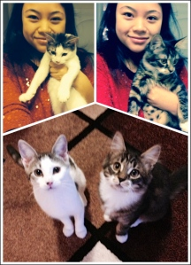 me and kitties
